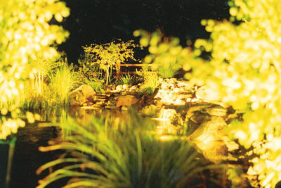 Alpine Edge Landscape Lighting - low voltage led outdoor lighting