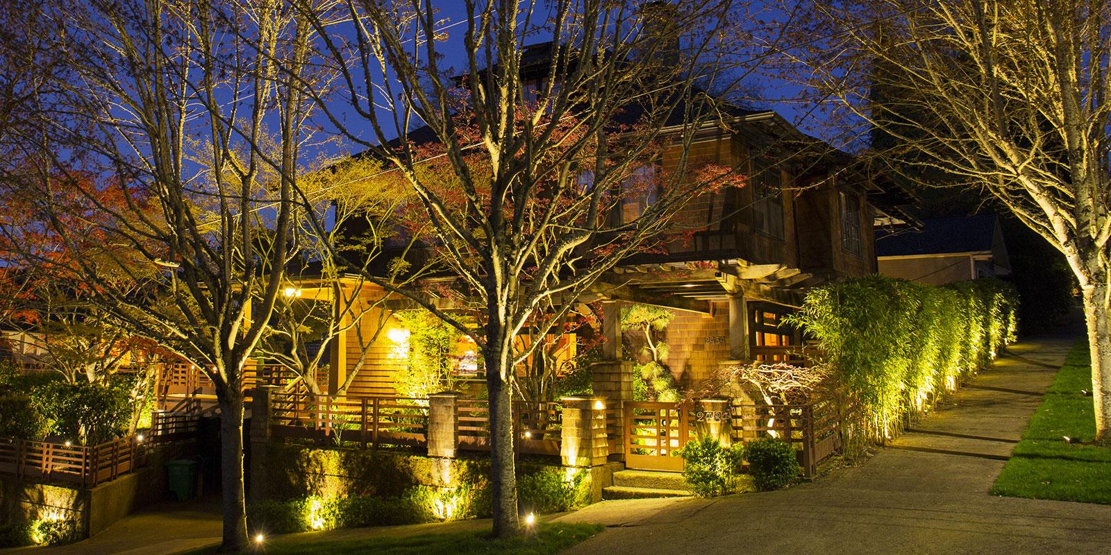 Landscape Lighting Tips for Beginners